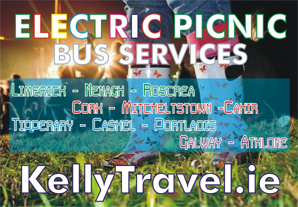 Electric Picnic 2013 Poster